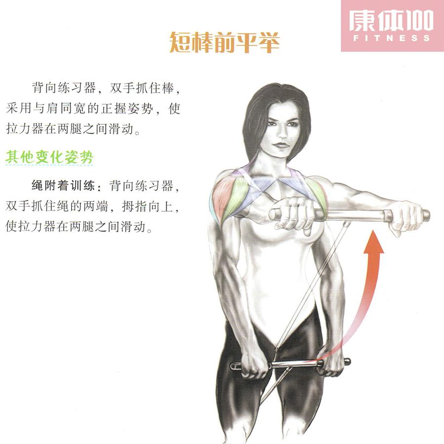 肌肉训练健身图解:三角肌肩部力量肌肉训练动作解析